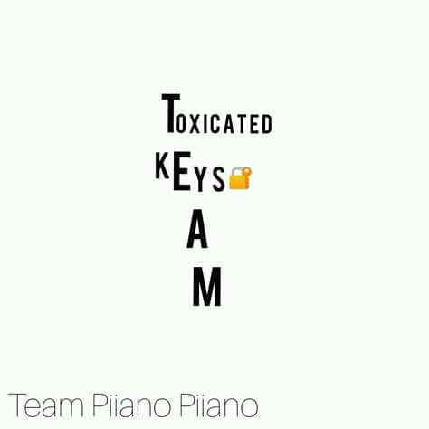 Toxicated Keys The Story Of My Life